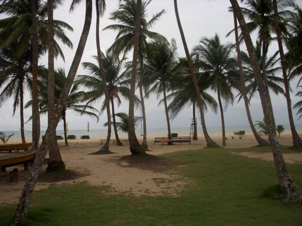 la-campayne-tropicana